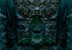 Illusion (One-Basic-Of-Art) Tags: illusion illusionen spiegel spiegelungen art artwork kunst kunstwerk edit bearbeitet fotografie photography annewoyand woyand anne 1basicofart onebasicofart green blue vert grün blau türkis face gesicht