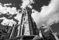 DSC01308 (Damir Govorcin Photography) Tags: st marys cathedral sydney building architecture sky clouds wide angle catholic church worship religion blackwhite monochrome zeiss 1635mm sony a7ii natural light
