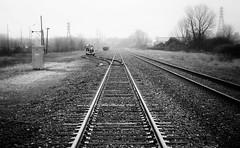 CSX Line, Benton Harbor (mswan777) Tags: railroad track train city road street rain monochrome black white benton harbor michigan ties lines nikon d5100 nikkor 1855mm outdoor