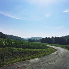 Morning walking to Brusnica (M@ROš) Tags: cloud sun slovakia farm blue green summer corn sky countryside nature forest hills fields road walking morning