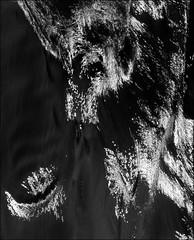 F_47A1167-2-BW 3-Canon 5DIII-Tamron 28-300mm-May Lee 廖藹淳 (May-margy) Tags: 沙痕 watertracksonbeach maymargy bw 黑白 臉譜 facesinplaces 沙灘 beach reflection 反射 線條造型與光影 linesformandlightandshadows 天馬行空鏡頭的異想世界 mylensandmyimagination 心象意象與影像 naturalcoincidencethrumylens 宜蘭縣 台灣 中華民國 taiwan repofchina f47a11672bw 3 yilancounty canon5diii tamron28300mm maylee廖藹淳