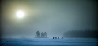 Fjellsjøen