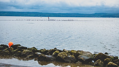 West Kirby marina. (Phil Longfoot Photography) Tags: coast coastline marina yacht yachts boats walkway people dogs landscape photo landscapephotography wirral merseyside nature tides rivers riverdee naturelovers pensioners friends