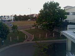 2017-04-28T06:30:04.647606+10:00 (growtreesgrow) Tags: trees timelapse raspberrypi
