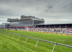 Pimlico Race Track (cmfgu) Tags: horse md maryland baltimore hdr highdynamicrange thoroughbred stands pimlicoracetrack marylandjockeyclub 138thpreaknessstakes