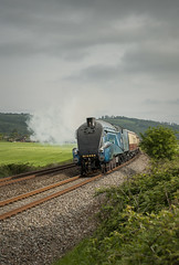 The Catherdals Express (MattVealePhotography) Tags: streamlined steamtrain bittern rewe lnera4