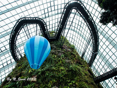 Cloud Forest (N_Quah) Tags: singapore cloudforest gardensbythebay