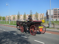 Amsterdam Koets Karos Cruquiuskade (Arthur-A) Tags: netherlands amsterdam carriage nederland horsecarriage koets karos paardenkoets