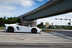 Aventador Roadster in motion (Matthew C. Photography) Tags: red motion beach beautiful car photography nikon photoshoot matthew c palm manager lamborghini spec rolling dealership roadster d3200 aventador jfphotofl