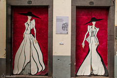 """doors of Funchal • <a style=""""font-size:0.8em;"""" href=""""http://www.flickr.com/photos/58574596@N06/9409795630/"""" target=""""_blank"""">View on Flickr</a>"""