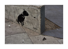 bad Stewy!! (jrockar) Tags: street city urban dog 3 london art wall canon painting lens fun prime graffiti photo stencil funny paint pavement mark f14 candid joke iii joy humor documentary sharp crisp madness shit 5d poo mm 50 ef mk dunk turd ordinary 5014 nonpeople stewy pickitup ordinarymadness thephotographyblog