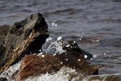Splash! (.-=[ D.T. ]=-.) Tags: nature water beautiful rock canon natural fjord splash saguenay 2013 60d