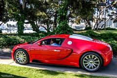 Veyron (Michael Leaf Photography) Tags: france bug french nikon gto bella bugatti lamborghini supercar symbolicmotors symbolic gallardo veyron bellaitalia gumpert hypercar gumpertapollo nikond40 aventador