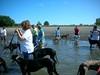 GreyhoundPlanetDaySept132009028