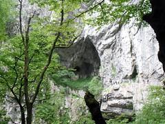 skocjanske jame 鐘乳石洞 potojna slovenia  628 2013 (45) (victory one) Tags: slovenia skocjanske