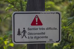 Déconseillé à la descente (Guimbi) Tags: hiking hike randonnée montwright guimbiproduction randonneepedestre guimbi sentierduvaillant sentierdelaforêtancienne parcdelaforêtanciennedumontwright