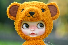 "Mango Pudding the ""Bear"""