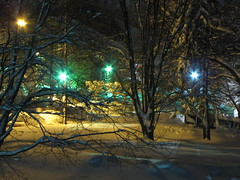 "Vacant lot in Aspen Hill, Maryland at night following first ""Snowmageddon"" storm (SchuminWeb) Tags: county trees winter snow storm ice weather night silver spring md ben empty web hill snowstorm lot property maryland vacant montgomery february icy aspen snowfall storms blizzard lots 2010 noreaster snowfalls snowstorms blizzards aspenhill snowpocalypse snowmageddon schumin schuminweb"