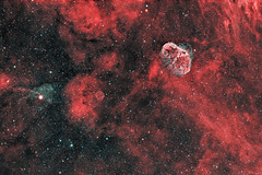 NGC6888 (the Crescent nebula) and PN G75.5+1.7 (the Soap Bubble) in bi colour # Explored (swag72 (www.swagastro.weebly.com)) Tags: sky stars object space deep astro crescent nebula astrophotography astronomy universe cosmos soapbubble dso nebulae nebulosity ngc6888 Astrometrydotnet:status=solved sarawager g75517 vision:night=061 Astrometrydotnet:id=supernova10559
