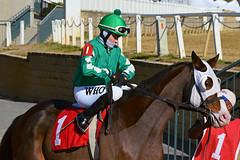 "2012-11-16 (101) r3 Wesley Ho on #1 Don't Scip a Check (JLeeFleenor) Tags: photos photography marylandracing md marylandhorseracing jockey جُوكِي ""赛马骑师"" jinete ""競馬騎手"" dżokej jocheu คนขี่ม้าแข่ง jóquei žokej kilparatsastaja rennreiter fantino ""경마 기수"" жокей jokey người horses thoroughbreds equine equestrian cheval cavalo cavallo cavall caballo pferd paard perd hevonen hest hestur cal kon konj beygir capall ceffyl cuddy yarraman faras alogo soos kuda uma pfeerd koin حصان кон 马 häst άλογο סוס घोड़ा 馬 koń лошадь ho maryland"