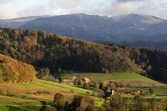 heralds of winter - Vorboten des Winters (claude05) Tags: autumn geotagged blackforest challengeyouwinner kandel1241m geo:lat=4812935996068137 geo:lon=7892485701388523