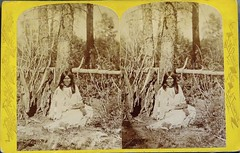 Shi-rah-rah, Wife of To-ko-wah-ner.  Photo by John Hillers (ca. 1872-1874) (lhboudreau) Tags: arizona southwest west history utah stereogram 3d indian coloradoriver powell wife historical stereoview indians geology northernarizona stereograph survey nativeamericans topology utes ethnography 1870s indianwomen stereographs stereograms wasatchmountains stereocard stereoimage hillers 3dphoto indianwife stereoviews stereocards johnwesleypowell 3dphotos coloradovalley no108 johnhillers jwpowell powellexpedition historyin3d 18721874 topographicalandgeologicalsurvey uintautestribe shirahrahwifeoftokowahner shirahrah wifeoftokowahner uintavalley