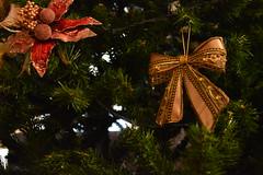 More Christmas decors (Mike Dirhalidis) Tags: christmas xmas tree holidays spirit angels decors