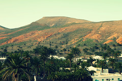 Haria (DTR Photography) Tags: trees houses mountains tree islands spain europa europe village north lanzarote palm palmtrees palmtree canary canaryislands spanje eilanden canarische haria canarischeeilanden