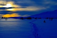 The blue hour! (Jim Skarli) Tags: blue winter light sunset mountain snow norway landscape norge vinter nikon hour nordic fjell solnedgang blueazul bltime vinterfjell
