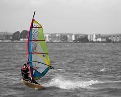 windsurfing.jpg (justdevine) Tags: dorse