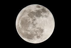 Full Moon - 16th March 2014 (John5199) Tags: moon march suffolk nikon fullmoon 16th haverhill d3000 sigma150500 1632014 sigmafull
