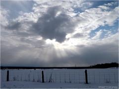 *Sun Rays On The Horizon* (army-brat) Tags: blue sky cloud white snow clouds fence spring purple farmers farm horizon land rays farmer sunrays pontiacquebec sunraysonthehorizon
