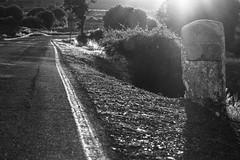 Former times Milestone (Shemsu.Hor) Tags: cañamares guadalajara milestone hito mojón road carretera blancoynegro bw sun sol sunset atardecer light verano summer landmark