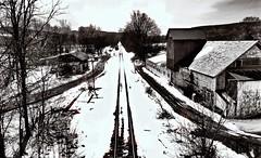 Hoosick Falls Rail Line (Professor Bop) Tags: professorbop drjazz olympusem1 rail railroad railway railroadtracks rightofway tracks snow winter monochrome ny newyork hoosickfallsnewyork mosca blackandwhite bw