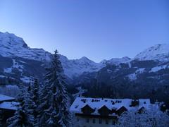 ... ... ... ...Guten MOrgen... ... (project:2501) Tags: wengen jungfrauregion suisse switzerland snow ski travel hotel hotelbelvédère hotelroom artnouveau 1912 view aroomwithaview balcony theviewfromhere morning morninglight bluelight blue bluebleu bleu sunrise inthemountains mountains mountain rock pinetrees alpinefauna stellifluh2232m mürren1634m jungfrau4158m breithorn3782m tschingelhorn3557m gspaltenhorn3437m