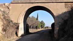 Puente Vía Verde Tarazonica (Eduardo OrtÍn) Tags: viaverde puente camino