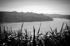 Manukau Heads Lighthouse (NickPaulsen) Tags: auckland lighthouse newzealand manukau nature peninsula