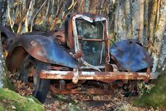 Forlatt Nash LaFayette 1935 - - Deacaying Nash LaFayette (erlingsi) Tags: nashlafayette1935 volda rusty rust decay abandoned wreck trees surrounded vrak
