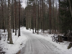 2017 Bike 180: Day 49, March 18 (olmofin) Tags: 2017bike180 finland bicycle ski tracks latu polkupyörä kevät spring metsä forest woods path pyörätie