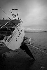 Friday (The Moon & Back) Tags: bw ocean boat monochrome black white dark light shadow ship marine maritime composition coast sand shipwreck california sailing desolate abandoned friday water