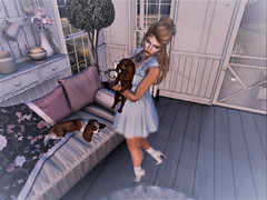 Puppy Love (Sparkle Mocha) Tags: jian puppy puppies avatar avie blue dress belle epoque shiny shabby splendid spaniels theepiphany kustom9 exile blogger blog thesassyshopper tʜᴇ kᴀᴡᴀɪɪ pʀᴏᴊᴇᴄᴛ