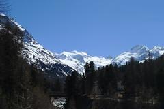 Bernina (czpictures) Tags: bernina piz palü mountains ski touring switzerland glacier mountaineering alpinism diavolezza morteratsch