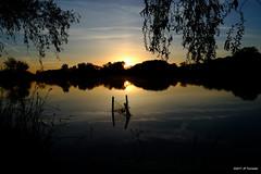 lueur matinale (jpto_55) Tags: matin reflet lac etang lacsoula plaisancedutouch hautegaronne france xe1 fuji fujifilm fujixf1855mmf284r ngc