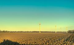 Six Mills. (Alex-de-Haas) Tags: 50mm d5 hdr holland hollandseluchten nederland netherlands nikkor nikkor50mm nikon nikond5 noordholland thenetherlands westfriesland akker arkkers beautiful beauty boerenland buiten buitenshuis daglicht daylight farmland grasslands handheld highdynamicrange landscape landschap licht light meadow meadows mooi morning ochtend outdoor outdoors polder schoonheid skies sky sunrise sunriselight warm weiland weilanden windenergy windmills windturbines windenergie windmolens winter zonsopgang