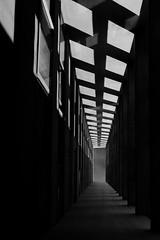 Grey sky corridor (zuhmha) Tags: totalphoto
