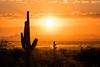 DSC_2646.jpg (RiverBum - MN) Tags: whitetank arizona phoenix mountains