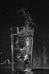 Sony is water-proof !!! (Des.Nam) Tags: nb noiretblanc noirblanc noir eau vase highspeed flash appareilphoto camera sony desnam nikon d800 85mmf18 bw blackwhite monochrome mono studio