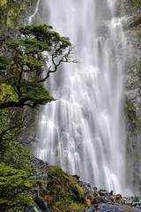 Devil's Punchbowl Waterfall (Rob Kroenert) Tags: devils punchbowl waterfall falls new zealand newzealand pacific island green tree arthurs pass national park south arthurspass long exposure