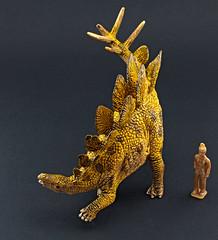 Stegosaurus (RobinGoodfellow_(m)) Tags: stegosaurus schleich 2017