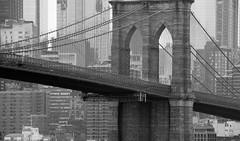 City Icon (chantsign) Tags: brooklynbridge blackandwhite monochrome cables tower manhattan buildings telephoto